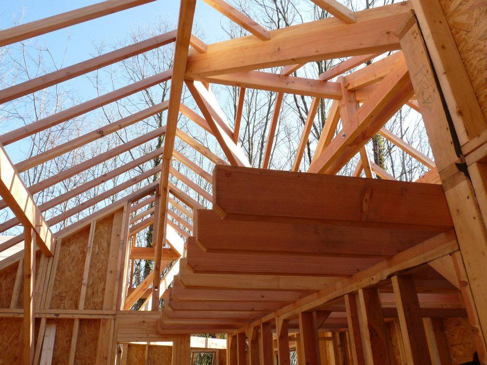 Achat terrain construction neuve - projet cabane